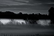 17th Oct 2016 - The Fog....