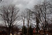 24th Feb 2016 - February Thunderstorm