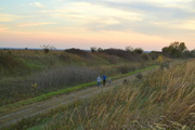 11th Oct 2016 - Family Walk on the Flint Hills Nature Trail