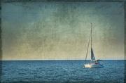 19th Oct 2016 - Raising Sails
