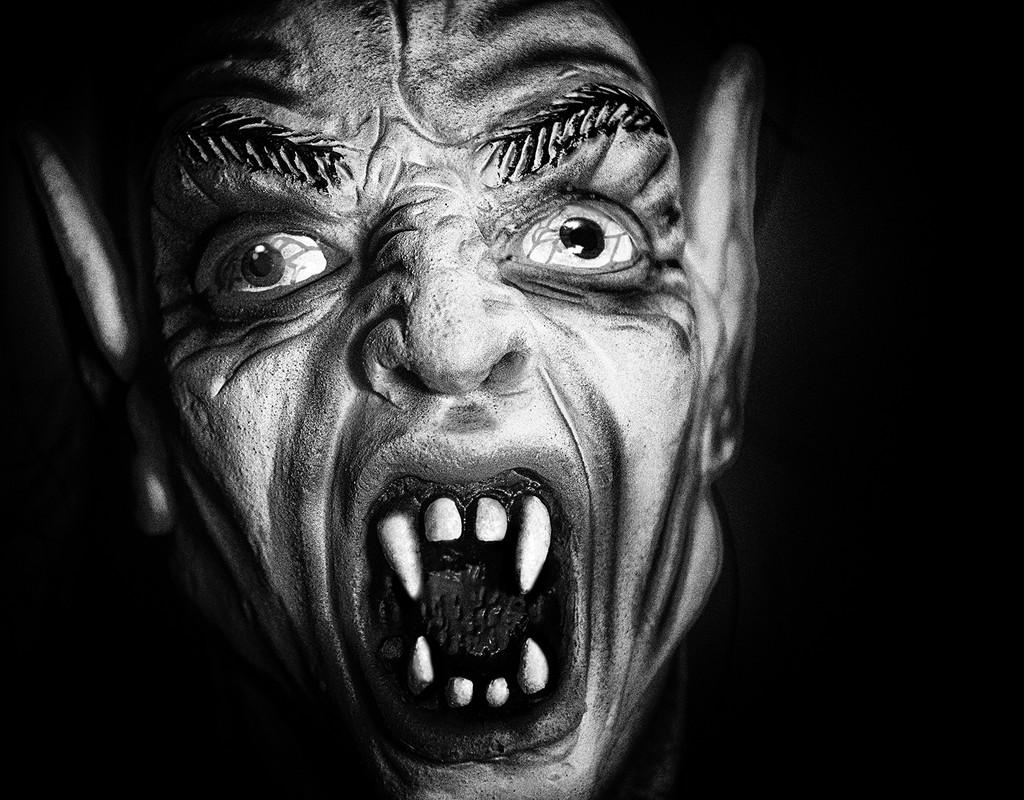 Screamer by davidrobinson