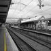 Stay Behind the Yellow Line by onewing