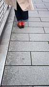 19th Oct 2016 - Red socks