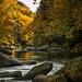 Slippery Rock Creek II by skipt07