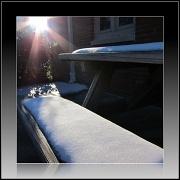 16th Dec 2010 - Picnic cancelled