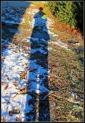 16th Dec 2010 - Long-Legged Librarian