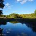 Guilford Salt Meadows Sanctuary