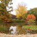Autumn at Wisley by busylady