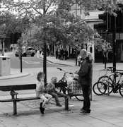 26th Oct 2016 - Balmy on the bench