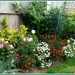 The flower border  by beryl