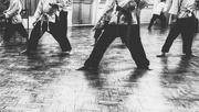 19th Oct 2016 - Karate Legs