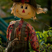 Scarecrow by dianen