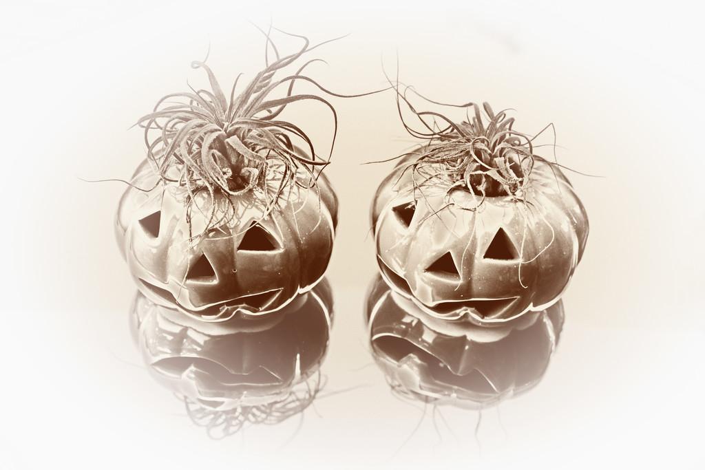 Pumpkin brothers by ingrid01