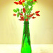 Rose-hips in a green bottle ....  by snowy