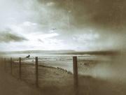 26th Oct 2016 - Beach views