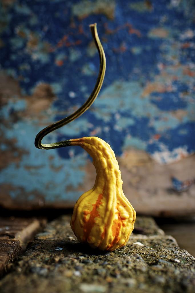 Twisty Top by kwind