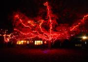 28th Oct 2016 - Halloween house