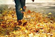 28th Oct 2016 - Walking from School