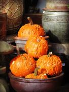 29th Oct 2016 - Urban Pumpkins