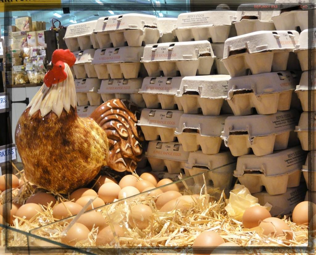 Guarding Mrs Hen's eggs  by beryl