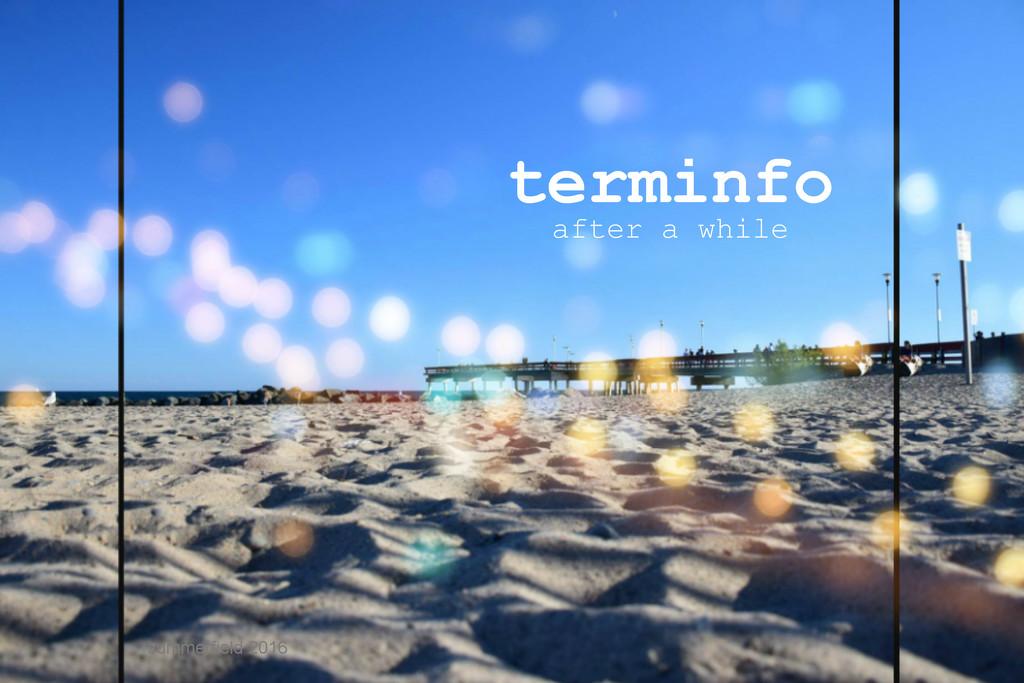 terminfo by summerfield