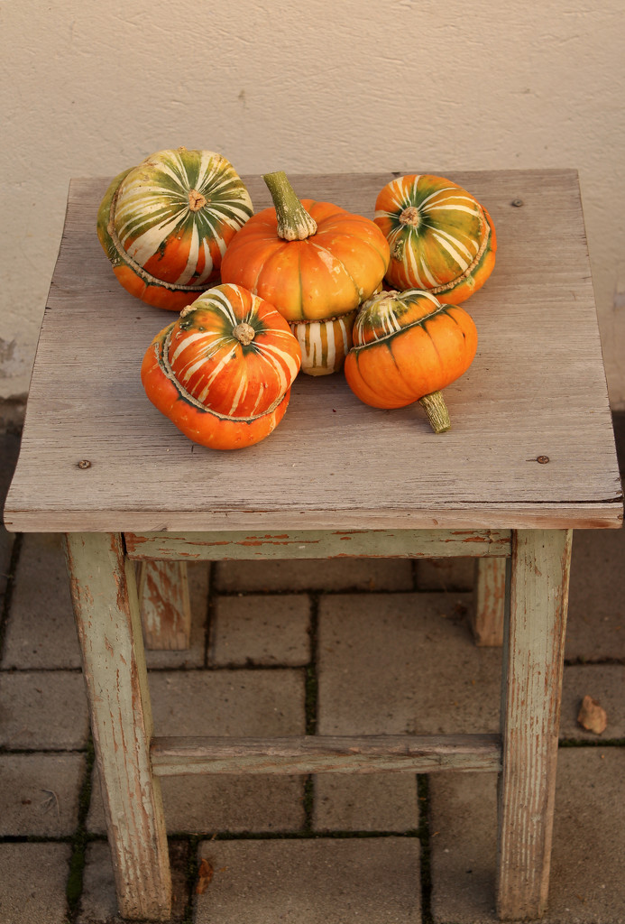 Decorative pumpkins by cherrymartina