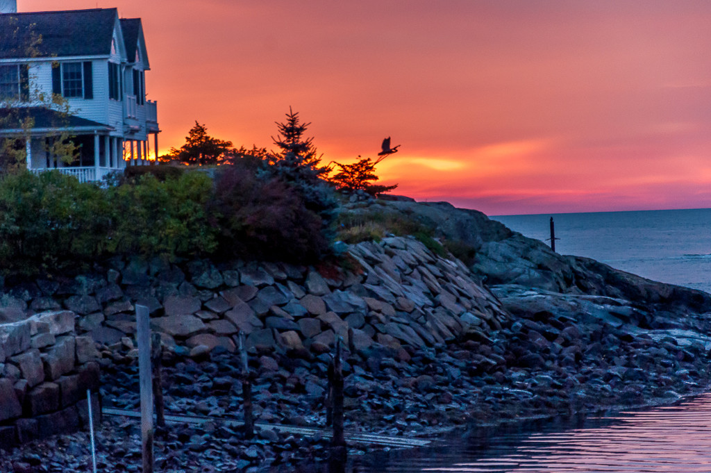 Sunrise at Perkins Cove by joansmor