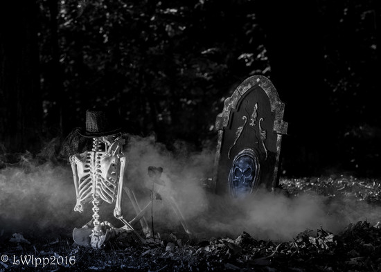 My Grave Awaits by lesip
