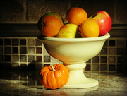 31st Oct 2016 - Sunlit Kitchen Counter