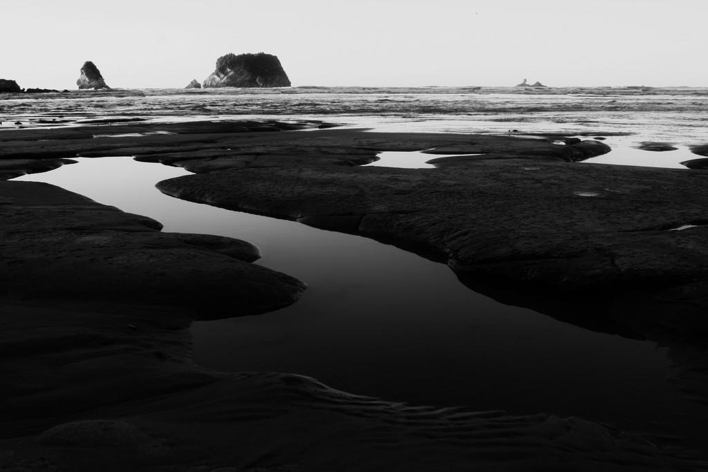 inter-tidal zone by kali66