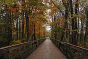 1st Nov 2016 - A Walk on the Bridge 3