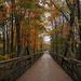 A Walk on the Bridge 3 by loweygrace