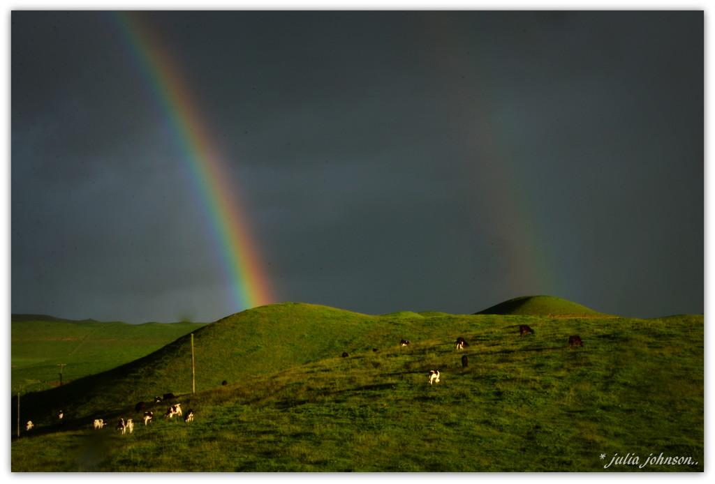 Under  the Rainbow... by julzmaioro