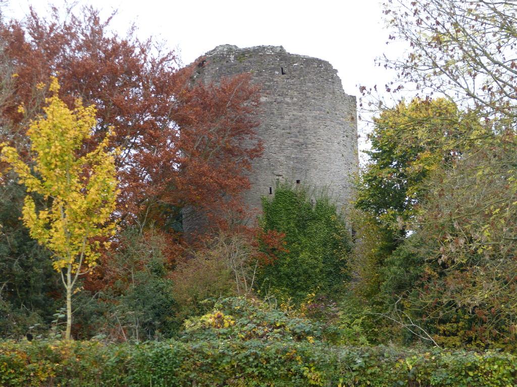 Bronllys Castle  by susiemc