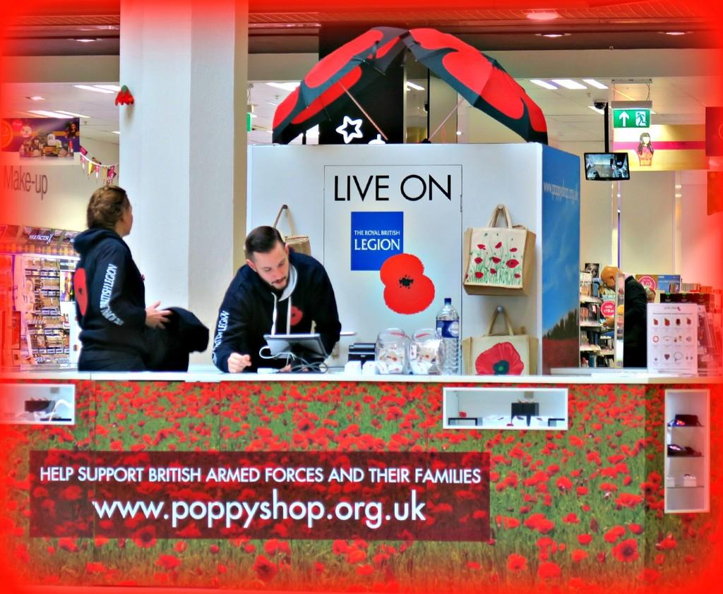 Pop-up-Poppy  shop. by wendyfrost