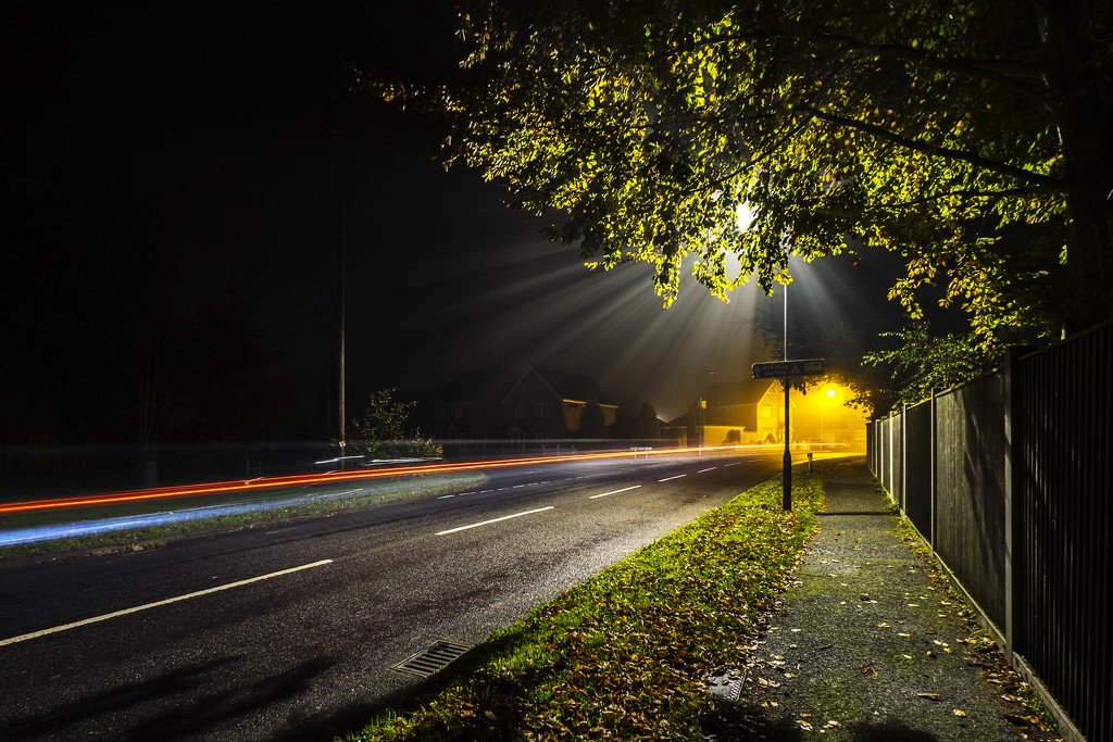Day 310, Year 4 - Late-Night Light by stevecameras