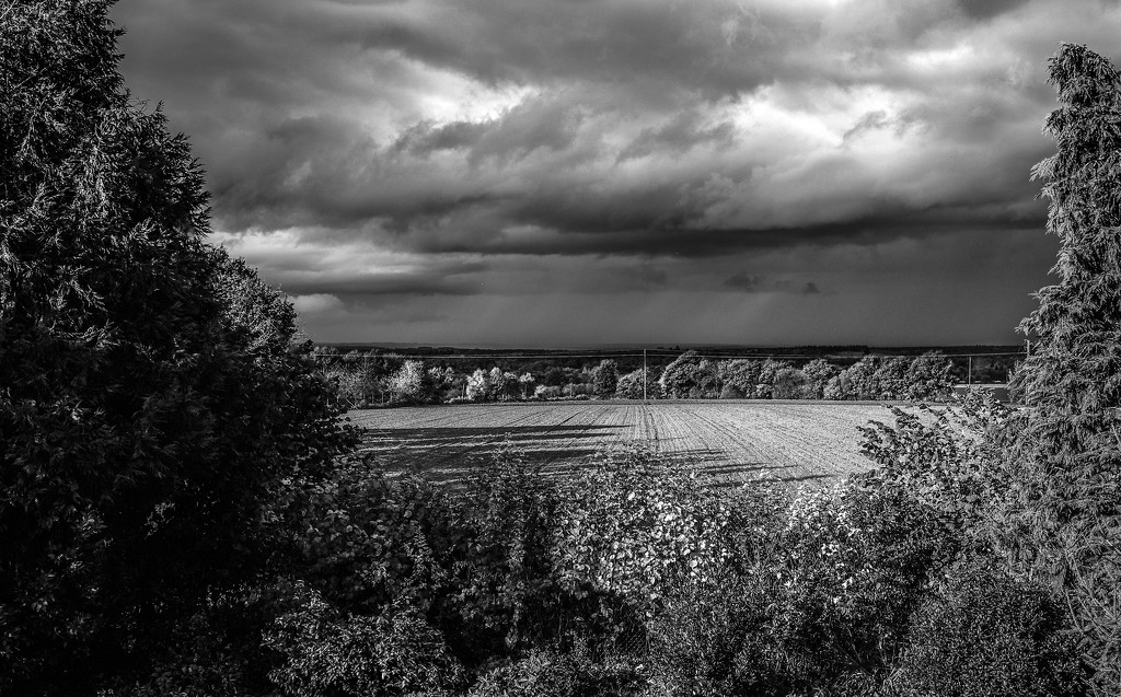 Project 52: Week 45 - Before the Storm by vignouse