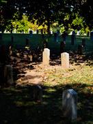 22nd Oct 2016 - Headstones