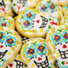Day of the Dead Sugar Cookies by nicolecampbell