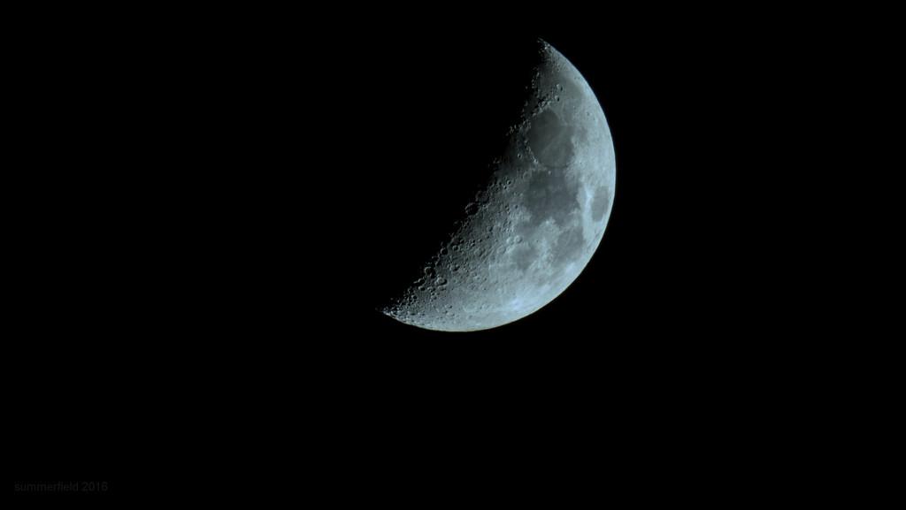 blue moon by summerfield