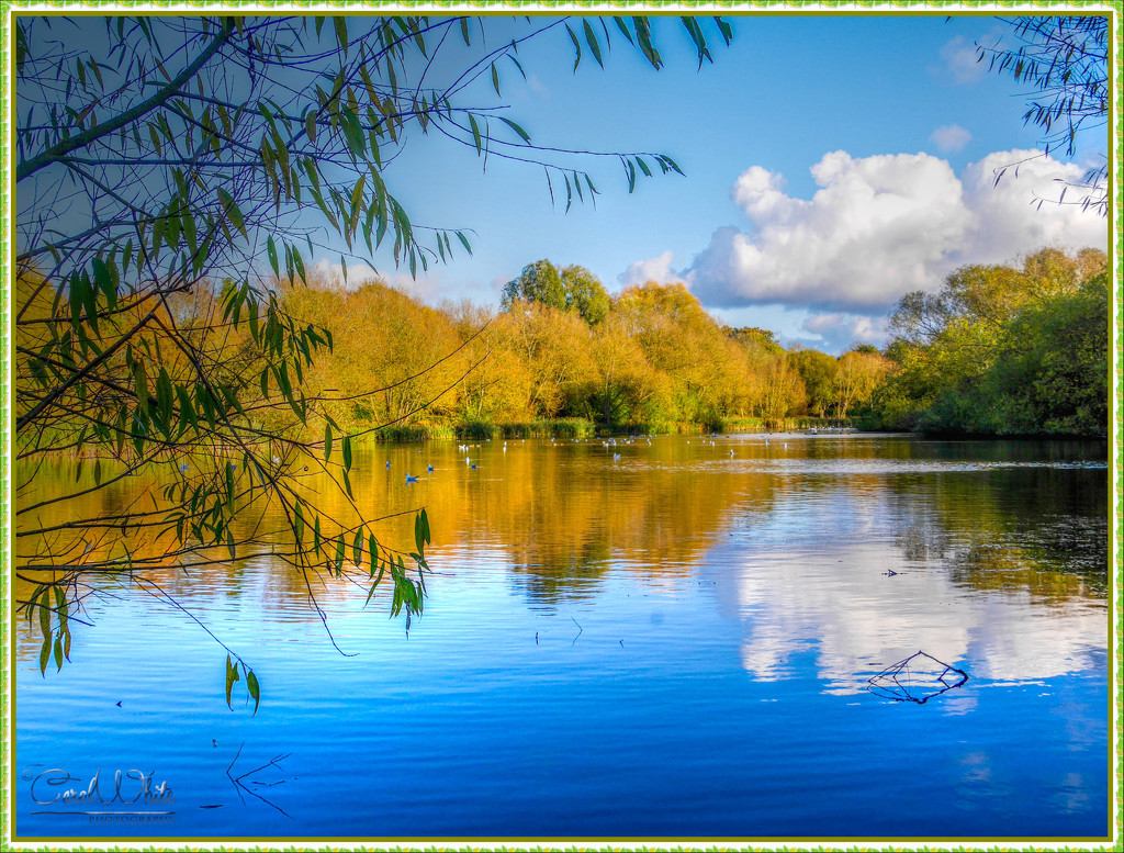 An Autumn Afternoon On The Lake by carolmw