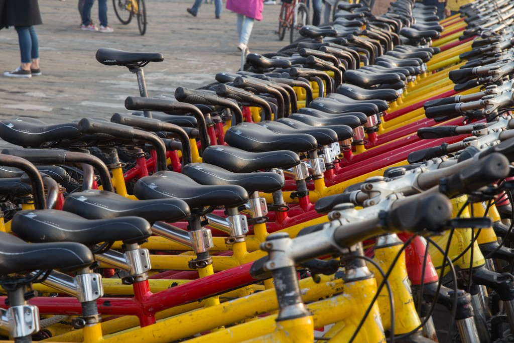 What Tall Person Rented THAT bike? by jyokota