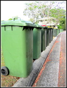 10th Nov 2016 - Rubbish bin collection day at the village!!