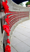 11th Nov 2016 - Remembrance Day   WE WILL remember them