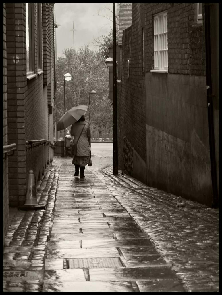 Aylesbury walk 2 by jokristina
