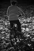 10th Nov 2016 - Biking