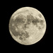 2016 11 13 - Super Moon by pamknowler