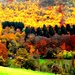 How Autumnal is my valley.. by ajisaac