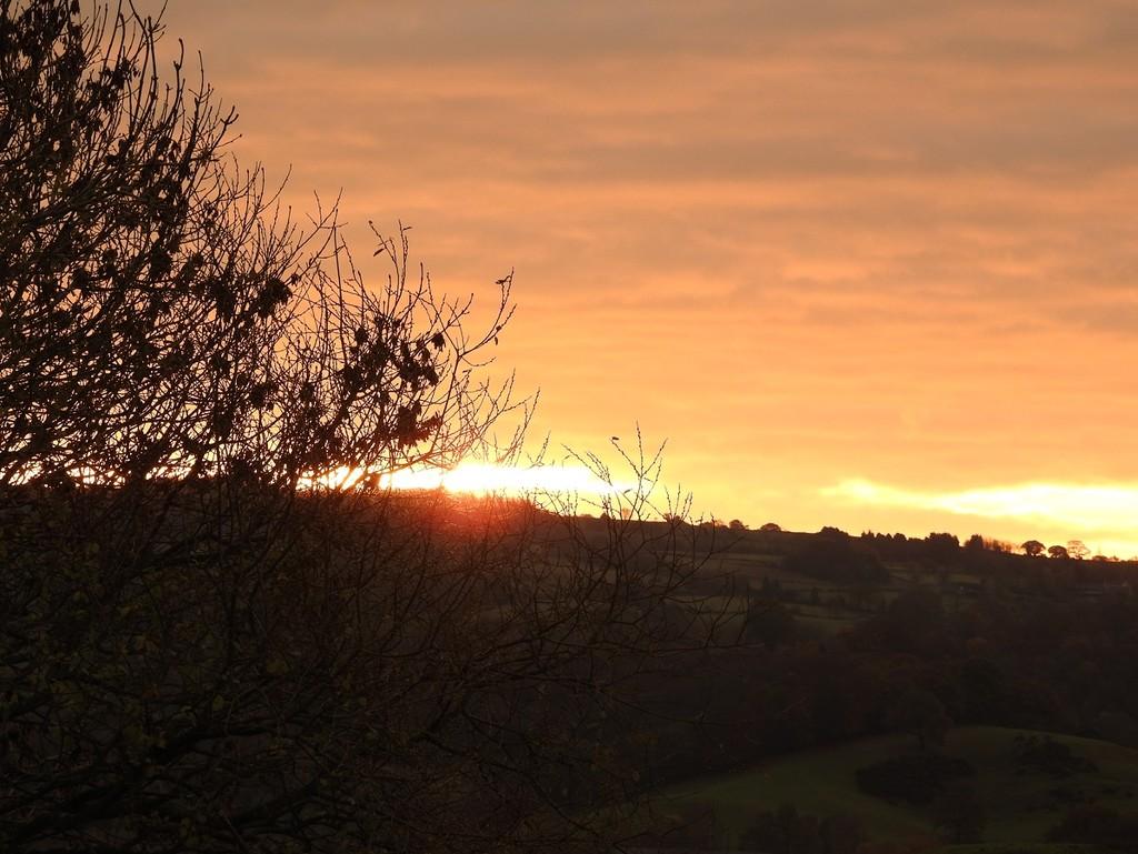 Sunrise by roachling