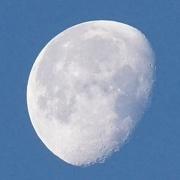 18th Nov 2016 - morning moon